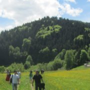 walking-tour in Black Forest © Innovation Academy e.V