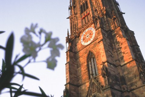 Freiburg Cathedral © FWTM / Raach