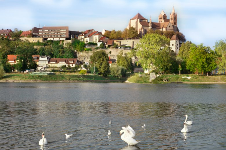 View over the Rhine on cathedral St. Stephan © Breisach Touristik
